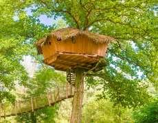 Dormir dans une cabane perché dans les arbres