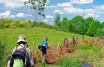 Festival de la Randonnée : Mille pas aux 1000 étangs