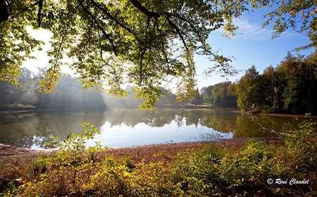 Regarder, écouter, comprendre... l'Echappée des 1000 étangs
